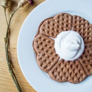 Chocolate Oat Waffles | mygutfeeling.eu #vehan #glutenfree #lowfodmap
